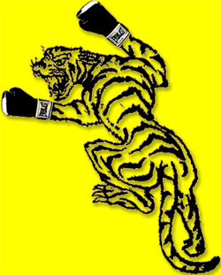Tiger Boxing Gym Logo