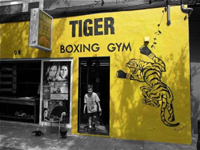 Tiger Boxing Gym